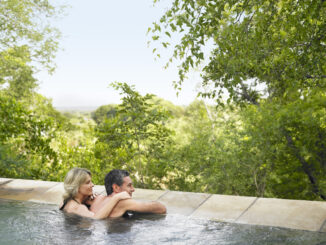 Rear view of an adult couple in pool looking at view